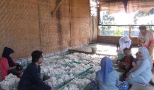 Dengan pekerja pengrajin jamur